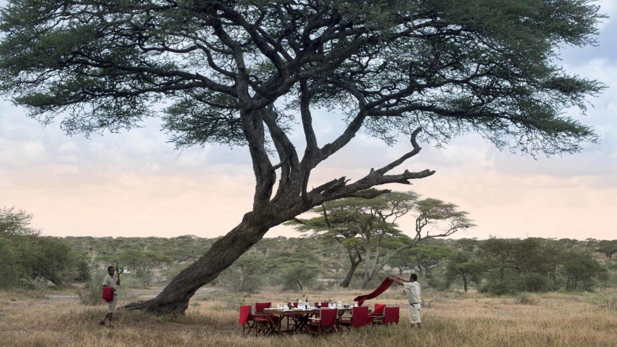 &Beyond Serengeti Under Canvas 2